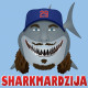 Chicago_Cubs_Jeff_Samardzija_Shark-ZM-CAR.jpg